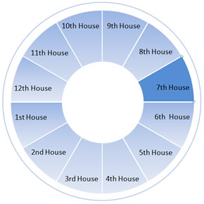 The Seventh House Wheel