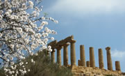 Temple of Hera, Valley of the Temples, Agrigento
