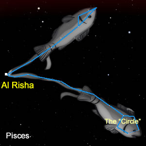 The Stars of Pisces